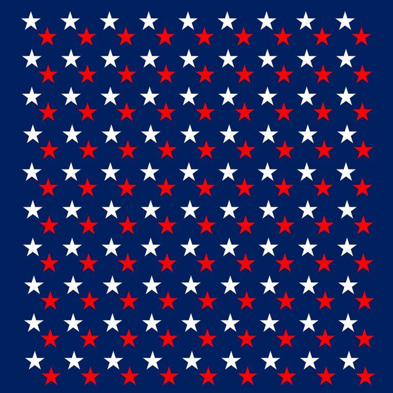 דגל אמריקה - אזרחות